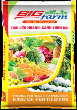 BIG FARM ĐẦU VỤ