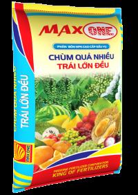 MAX ONE ĐẦU VỤ